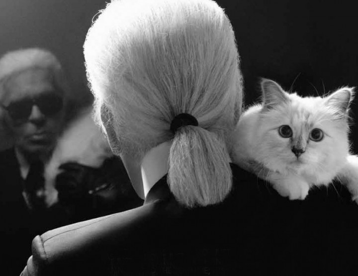 "KARL LAGERFELD - ""Perfume is Fashion for the Nose"""